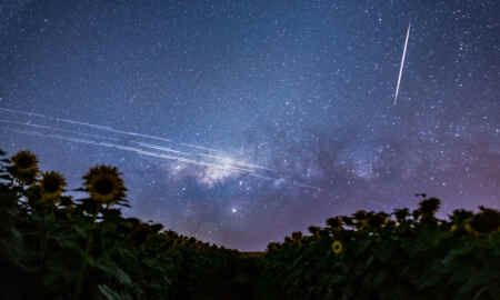 Why SpaceX starlink will revolutionise the internet